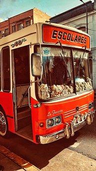 Bus, School Bus, School, Vehicle, Schoolbus, Children