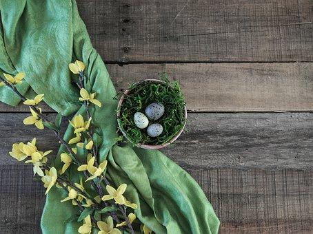 Spring, Easter, Eggs, Flower, Yellow, Nature, Nest