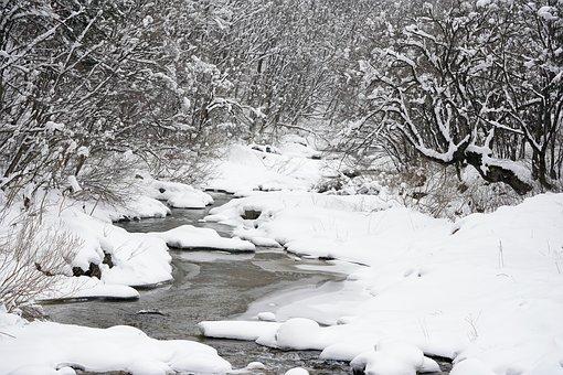 Snow, Winter, Brook, Mountain, Tree