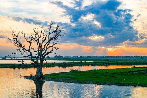 Myanmar, Tree, Lake, Nature, Burma, Landscape, Water