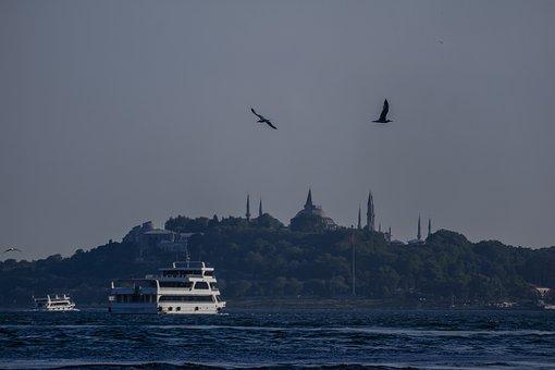 Mosque, Turkey, Istanbul, Travel, City, Tourism