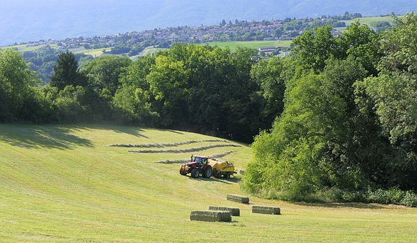 Tractor, Field, Boot, Hay, Landscape, Grass, Work