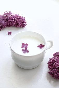 Milk, Drink, Cup, Lilac, Flowers, Flora, May, Plants
