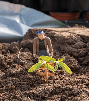 Toys, Gardening, Miniature Figures