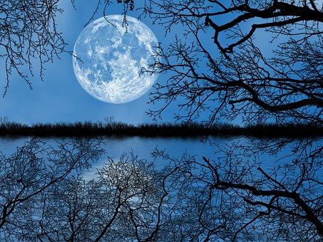 Nature, Dusk, Full Moon, Reflection, Night Sky, Sky