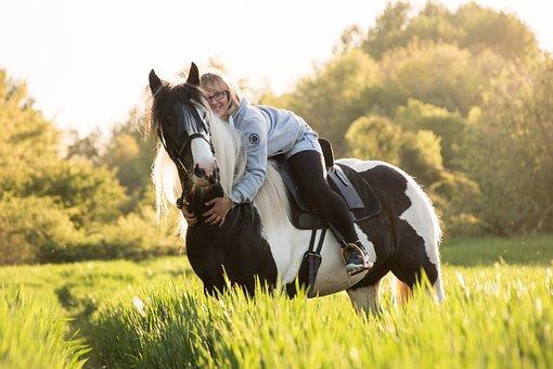 Tinker, Horse, Animal, Ride, Embrace, Reiter, Nature