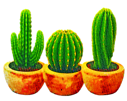 Watercolor Cactus, Succulents, Cacti