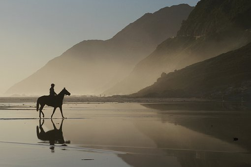 Horse, Mountains, Lagoon, Sea, Reflections, Silhouette