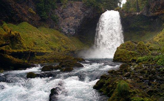 Sahalie, Oregon, Waterfall, Lush, Forest, River, Nature