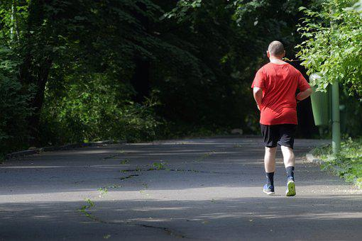 The Person, Man, Running, Walkway, Park, Trees, Summer