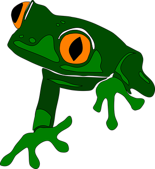 Frog, Animal, Cute, Amphibian, Green, Tropical, Exotic