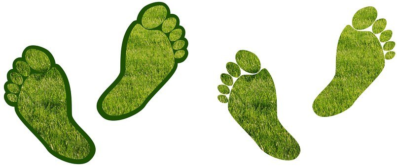 Assistance, Barefoot, Carbon, Carbon Footprint