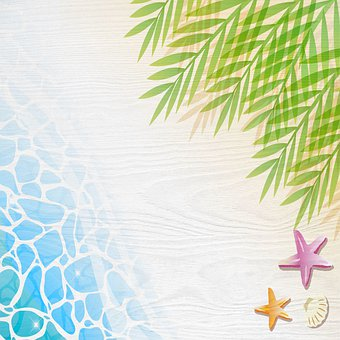 Beach Background, Sun, Sand, Water, Palm