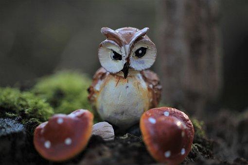 Owl, Mushrooms, Forest, Moss, Figures, Decoration