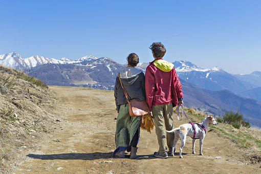 Couple, Guy, Girl, Dog, Mountain, Mountains, Nature