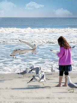 Girl, Female, Young, Kid, Seagulls, Gulls, Birds, Ocean