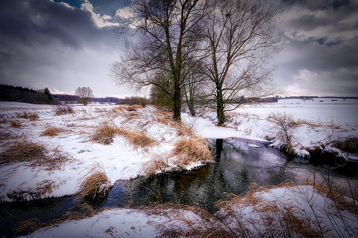 Winter, River, Stafford, Tx, Nature, Landscape, Bach