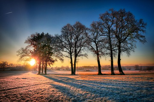 Sunrise, Winter, Cold, Snow, Landscape, Nature, Wintry