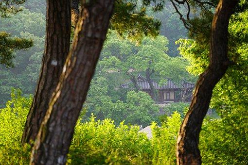 To, Racing, Hanok, Republic Of Korea