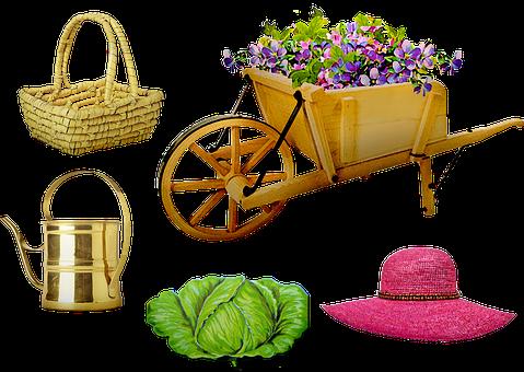 Garden, Wheelbarrow, Hat, Basket, Cabbage, Flowers