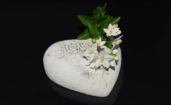 Heart, Jasmin, Flower, Flowers, Affection, Love