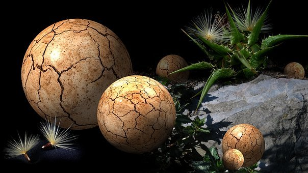 Globe Thistle, Milk Thistle, Balls, Stone, Round