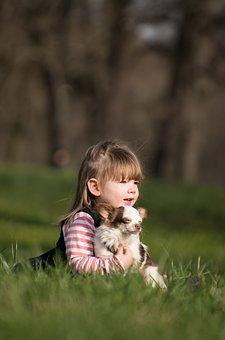 Girl, Human, Animal, Dog, Chiwawa, Small, Sweet, Cute