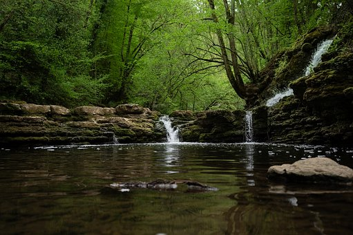 Waterfall, Forest, Nature, Bach, Landscape, Water, Moss