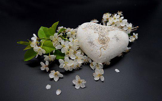 Heart, Flowers, White Flowers, Affection, Love