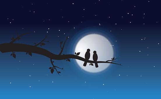 Night, Love, Moon, Romantic, Couple, Happy