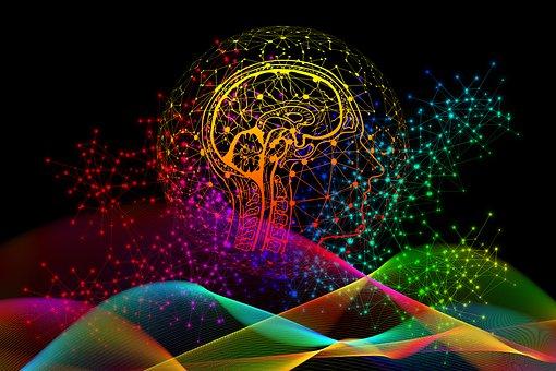 Binary, Code, Privacy Policy, Brain, View, Profile