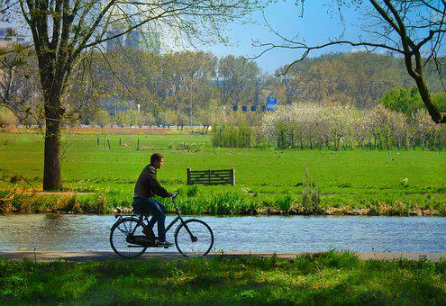 Cyclist, Bicycle Ride, Transport, Destination