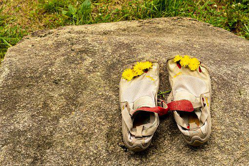 Companions, Shoe Pair, Flower Shoes, Shoes, Wedding