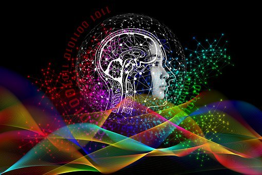 Binary, Code, Privacy Policy, Brain, Woman, Face, View