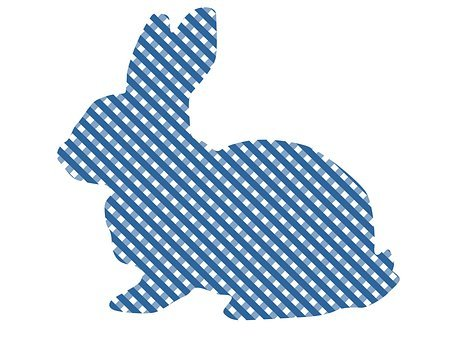 Easter, Bunny, Easter Bunny, Plaid, Blue, Baby, Spring