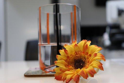 Office, Water Glass, Glass, Water, Office Desk