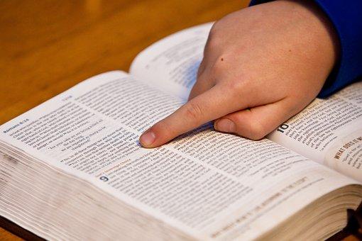 Bible Study, Bible, Hand, Child, Open Bible, Study