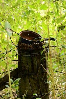Rural, Curiosity, Decay, Outdoor, Summer, Nature, Green