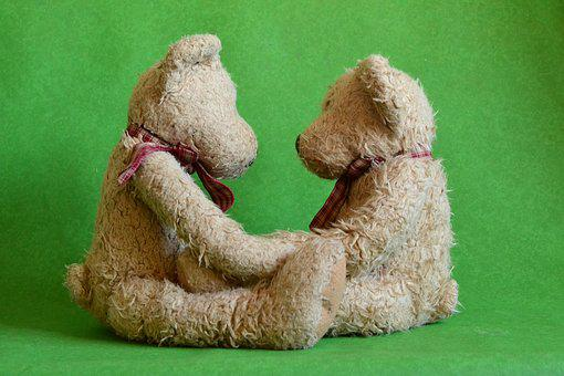 Teds, Couple, Love, Together, Cute, Shaggy, Teddy