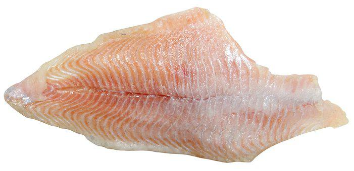 Catfish, Fish, Fillet, Seafood, Cooking, Aquaculture