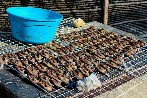 Dry, Fish, Food, Countryside, Local