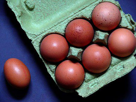 Egg, Egg Carton, Chicken Eggs, Food, Egg Box