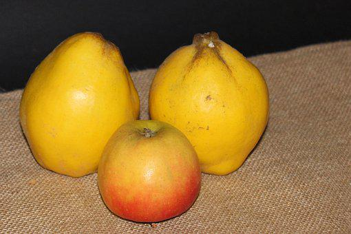 Quince, Pear Quince, Yellow, Apple, Red Apple, Fruit