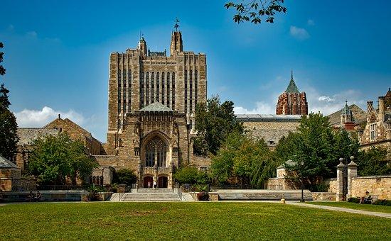 Yale University, Landscape, Universities, Schools