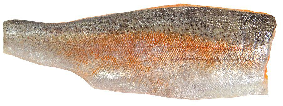 Seafood, Trout, Sea Trout, Fillet, Fish, Food