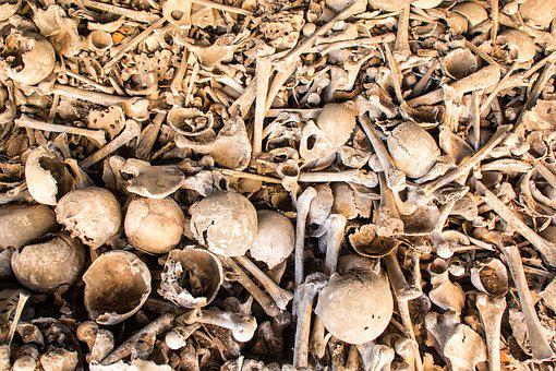Human Bones, World War, Death, Bone, Skull, Weird