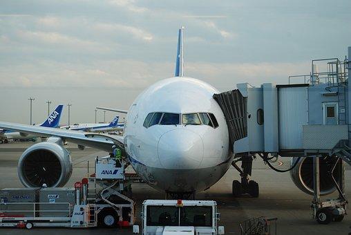 Airplane, Haneda, Evening, Aso, Kumamoto, Airport