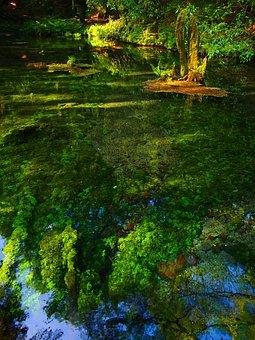 Therivers, Ubuyama Kumamoto, Water, Spring Water, Aso