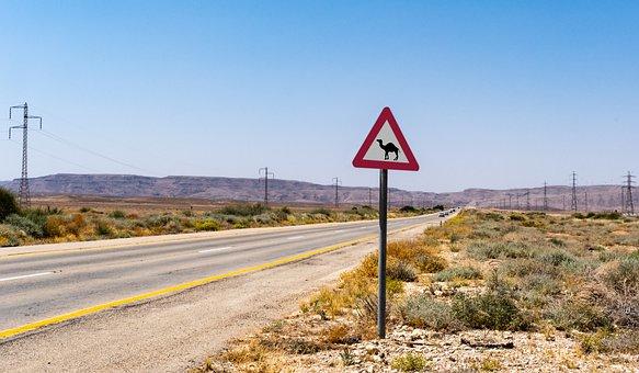 Camel, Crossing, Road, Sign, Desert, Landscape, Travel
