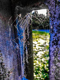 Cobweb, Masonry, By Looking, Nature, Out, Construction